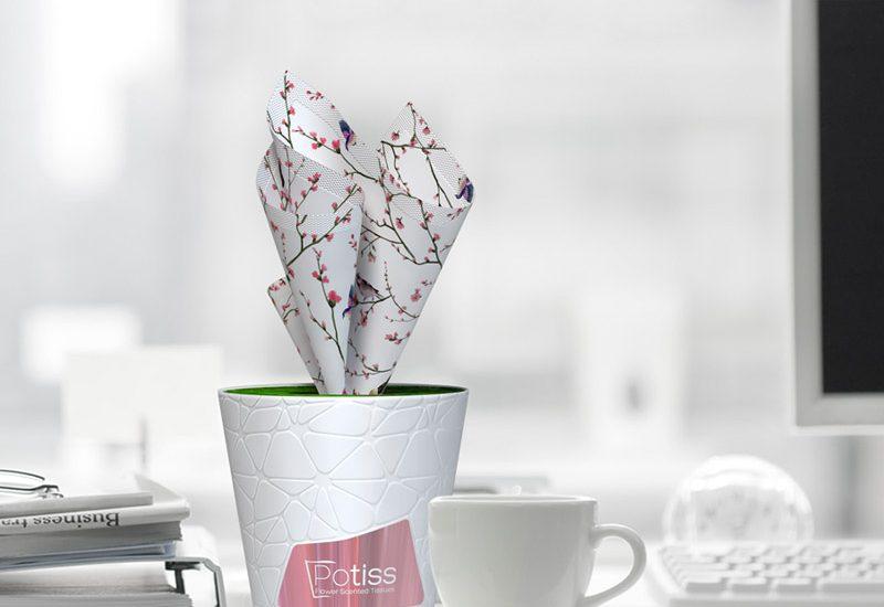 tissues kutu mendil ambalaj tasarımı